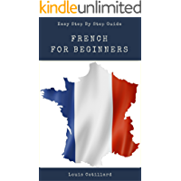 French For Beginners : A Pocket Guide to learn Basic French Fast: Esay French