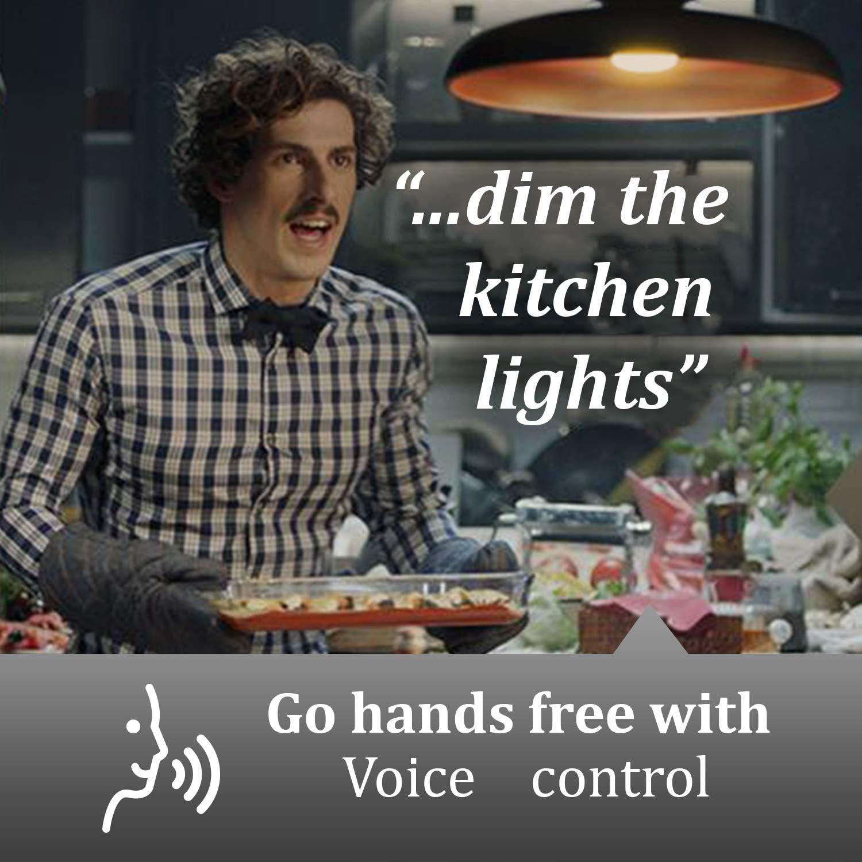 Luxbird Smart A19 LED Bulb Works with Alexa 2700K
