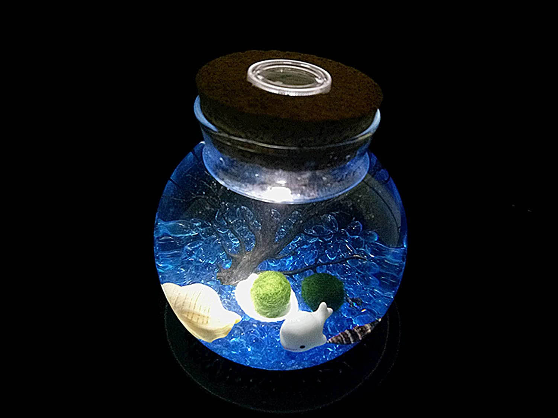 no USB No Light colore: Azzurro DishyKooker Mini barattolo per pesci a castello per Rumble Fish Marimo Spider Marimo