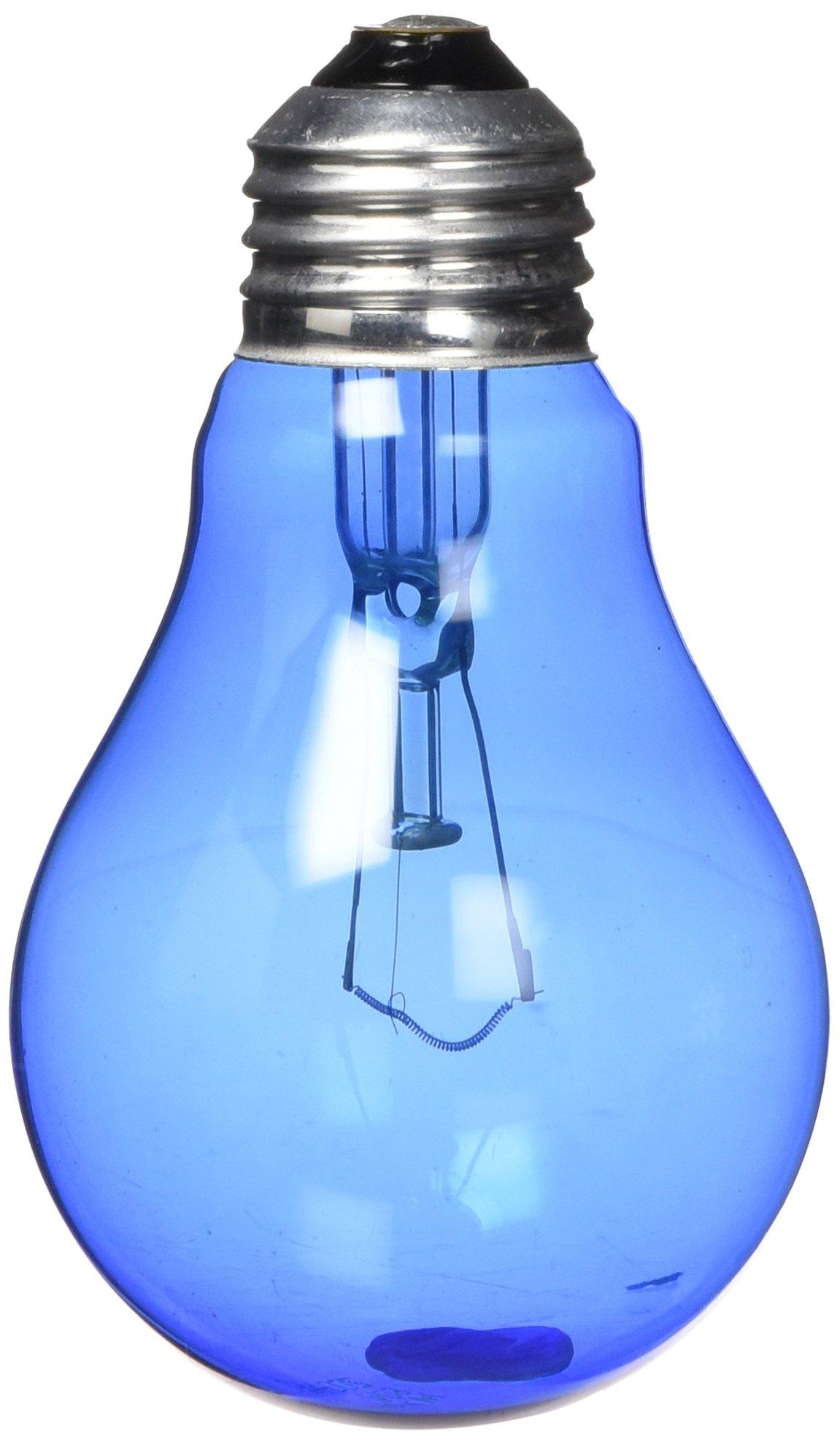 Zoo Med Day and Night Reptile 60 Watt Bulbs, Combo Pack