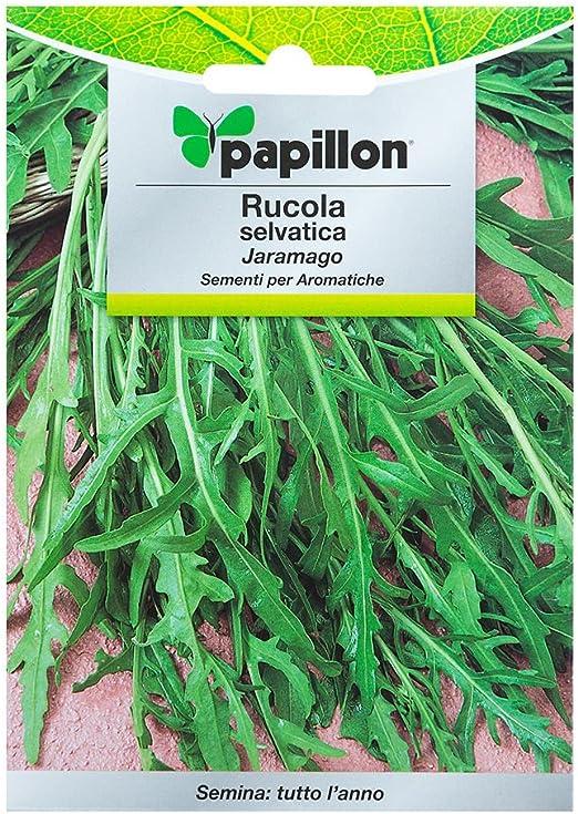 Semillas Aromaticas Rucula Selvatica (2.5 Gramos): Amazon.es: Jardín