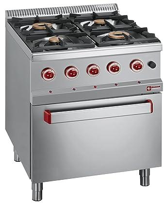 Modular Cocina de gas con 4 quemadores a gas horno GN2/1 invitados ...