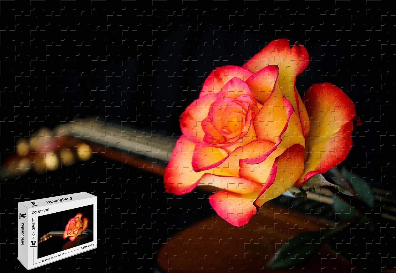 公式サイト PigBangbang -、20.6 X 15.1インチ B07HY6HLWT、バスウッド製 - レッドオレンジローズ - - 300ピースジグソーパズル B07HY6HLWT, Golder ゴールダー:9312aa73 --- sinefi.org.br