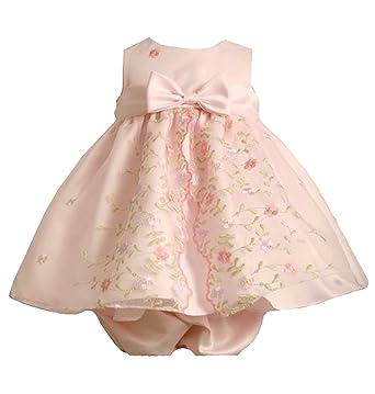 2bd09d49f4d Bonnie Jean Baby-Girls 3M-24M Pink Sequin Embroidered Split Front Organza  Dress (