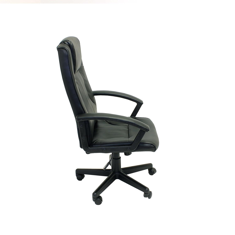 Amazon ALEKO ALC1723BL High Back fice Chair Ergonomic