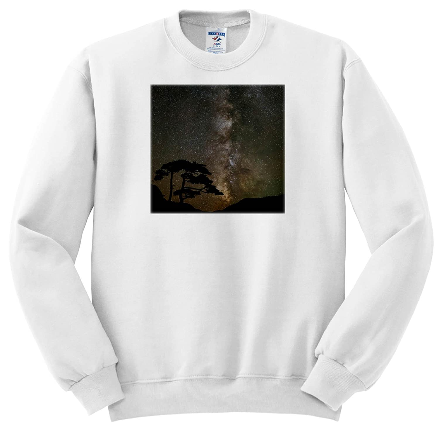 3dRose Danita Delimont - Milky Way - Milky Way and Silhouetted Tree, Near Ouray, Colorado - Sweatshirts ss_278693
