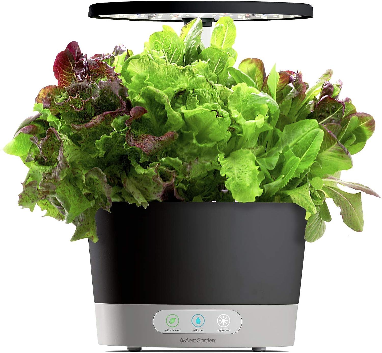 AeroGarden Harvest 360 - Black w/ Heirloom Salad Greens Seed Pod Kit