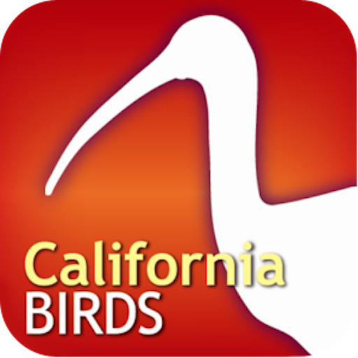Audubon Bird Guide: California (The Ca Put)