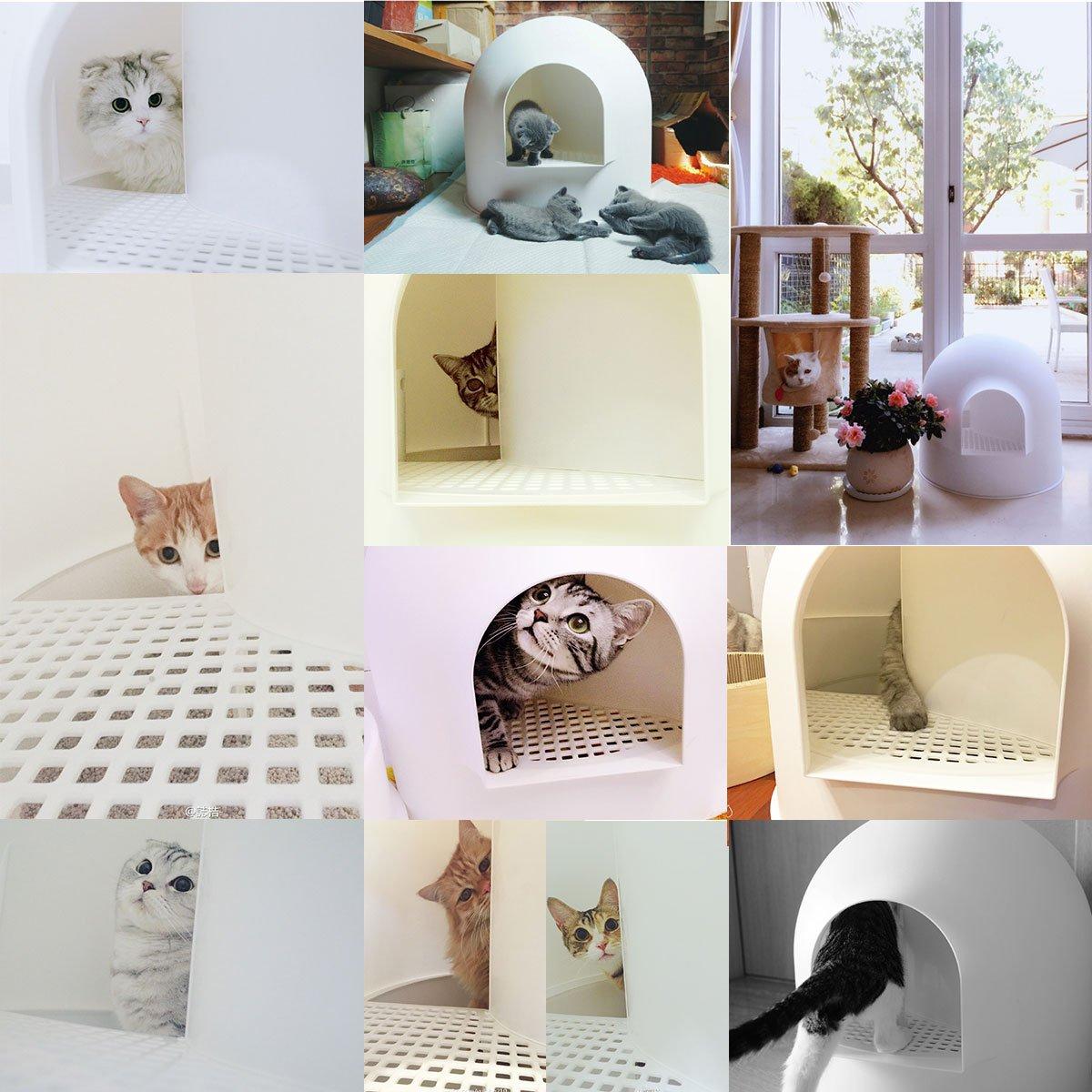 Pidan Studio Snow House Igloo Cat Litter Box, Red Dot Design Award Winner, White
