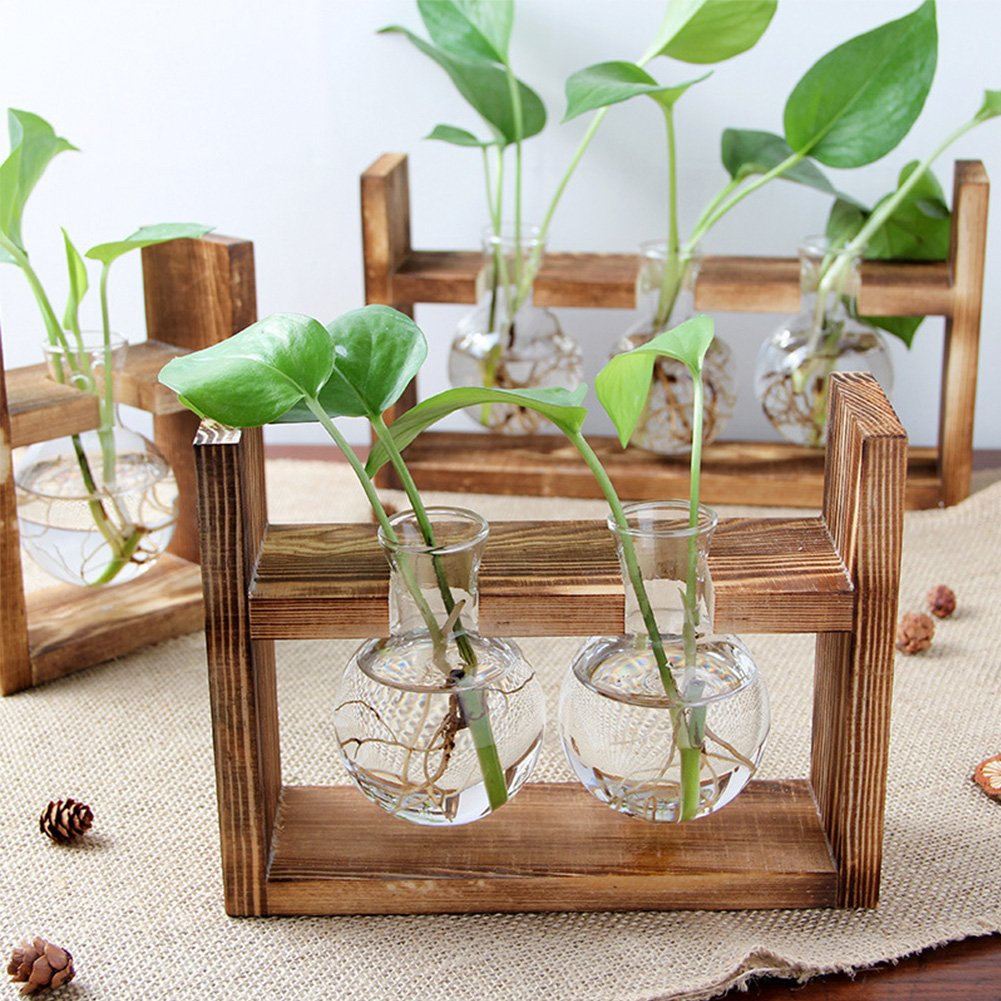 Creative Fashion Plant Terrarium Modern Decorative Glass Planter Hydroponics Terrarium with a Wooden Stand for Home Office and Centerpieces Decor 2 Terrarium HaloVa Terrarium