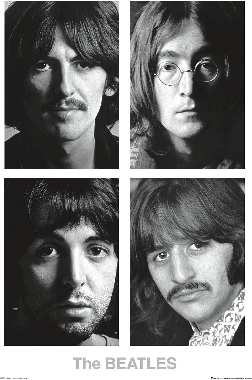 The Beatles Band Shot Signatures Poster 24 X 36