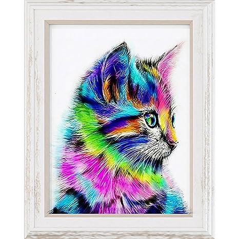 Cuadro de pared con diseño de gato en 5D, en punto de cruz, colores del arcoíris 1: Amazon.es: Hogar