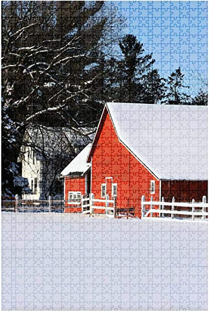 1000 Pieces Jigsaw Puzzles for Adults-Four Seasons,Large Jigsaw Puzzle for Educational Gift Home Decor