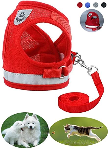 Amazon.com : GAUTERF Cat and Dog Universal Harness, Escape Proof Cat