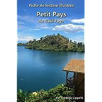 Fiche de lecture illustrée - Petit Pays, de Gaël Faye: Résumé et analyse détaillée de l'oeuvre