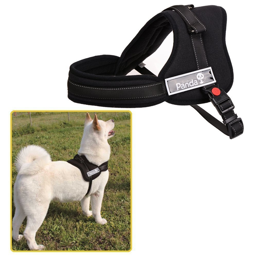 Ecoastal Dog Body Harness Padded Extra Chest Straps Heavy Duty with Handle Comfortable for Labrador, Golden Retriever, Samoyed, Husky Large Dogs
