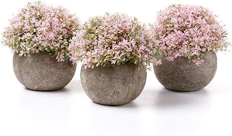 lebensechte Farben Künstliche Sukkulente Real-Like Blume Büro Dekor Hochzeit