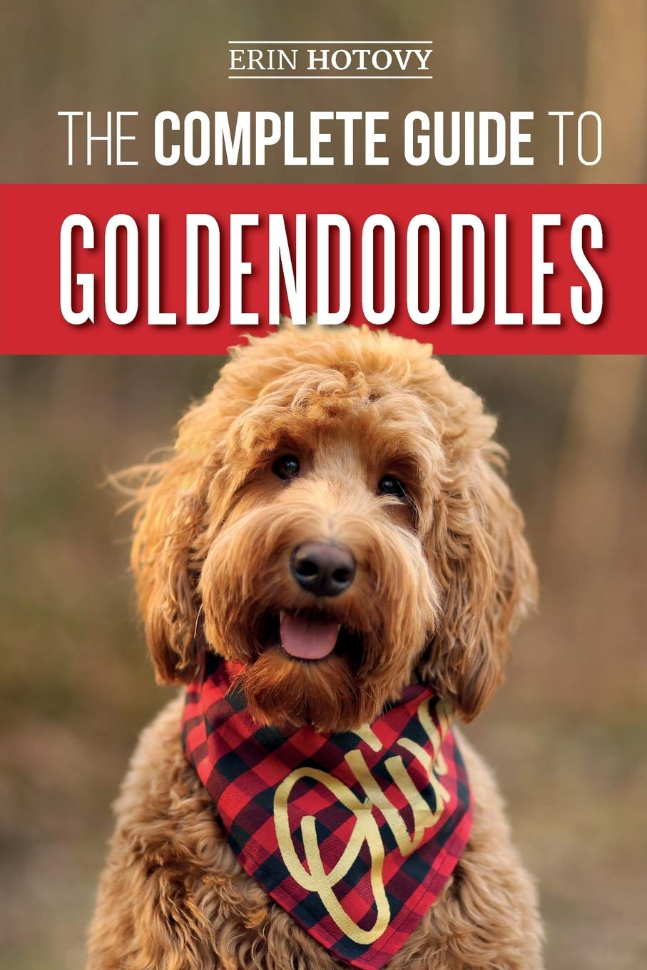 The Complete Guide To Goldendoodles How To Find Train