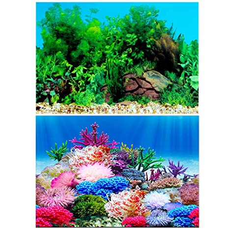 "Amakunft 19.7"" H x 48"" W Aquarium Background Sticker, Double Sides Wallpaper Fish"