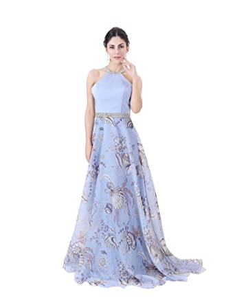 12f2df8cae19ac COROLA DIOSA Women s Print Organt Sleeveless Evening Dresses Formal Long Party  Dress (6) at Amazon Women s Clothing store