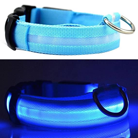 UK SELLER ! Improved Dog Visibility & Safety USB Rechargeable LED Dog Safety Collar. Ultra-Bright LED's. Connects to Devices. Dog will be more Visible & Safe (BLUE SIZE MEDIUM)