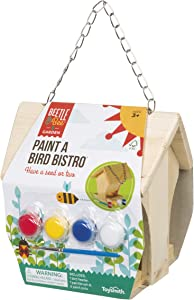 Toysmith Beetle & Bee Paint A Bird Bistro