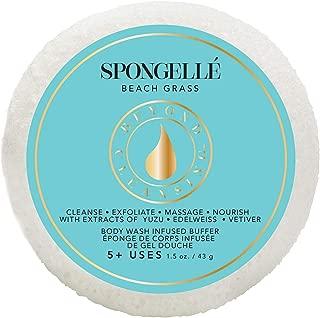 product image for Spongelle Travel Size Spongette Body Wash Infused Buffer (Beach Grass)