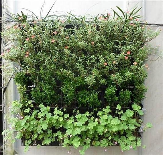 Longsing Bolsas de Crecimiento Bolsillo Colgante Jardín Jardinera ...