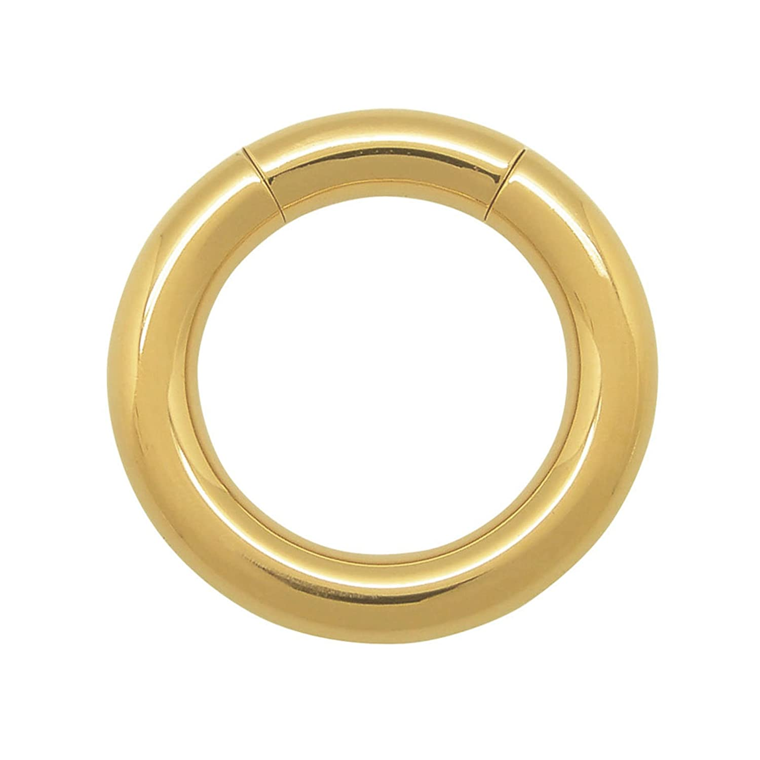 ACECHANNEL IP Gold Plated Stainless Steel Body Piercing Jewelry Segment Ring