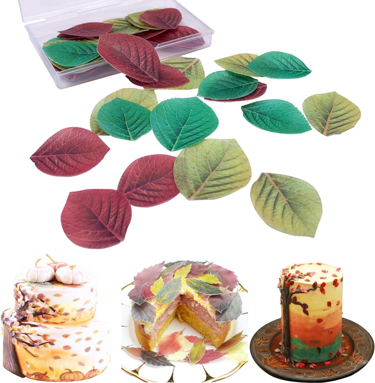 Multicolore en papier Riz comestible pour g/âteaux pour Saint Valentin de P/âques de No/ël et nouvel an Colorful Butterfly 44pcs