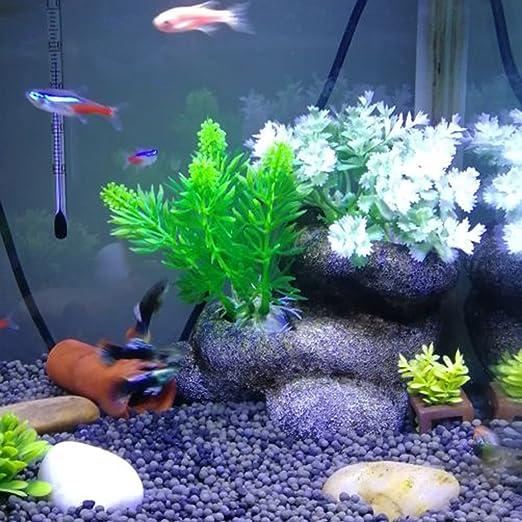 Runrain - Planta artificial para acuario, acuario, acuario, pecera, accesorios de decoración: Amazon.es: Jardín