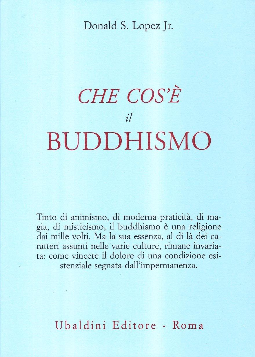 Che Cos è Il Buddhismo 9788834013793 Amazon Com Books