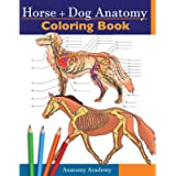 Horse + Dog Anatomy Coloring Book: 2-in-1 Compilation   Incredibly Detailed Self-Test Equine & Canine Anatomy Color…
