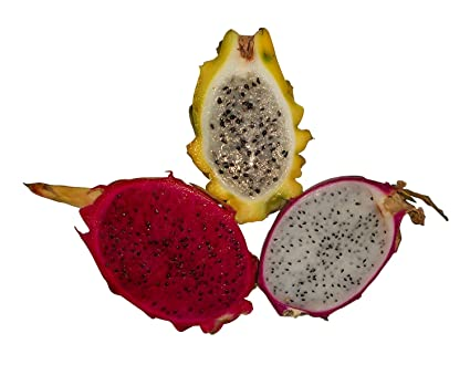 Pictures Of Dragon Fruit Fruit