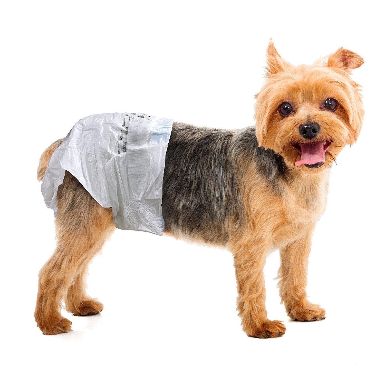 Simple Solution Pañales para perros, desechables: Amazon.es: Productos para mascotas