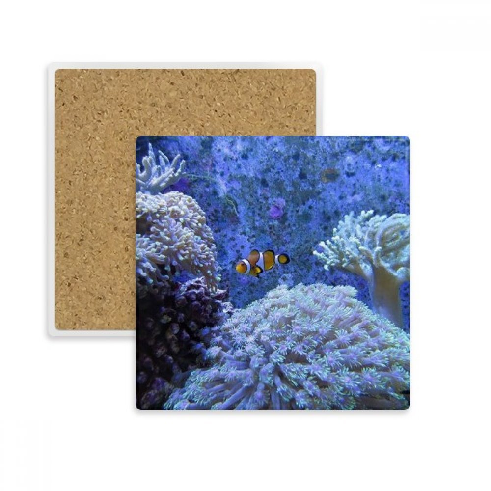 Ocean Coral科学Clownfish Nature Picture Squareコースターカップマグホルダー吸収性ストーンDrinks 2個のギフト   B07B2RWZS4