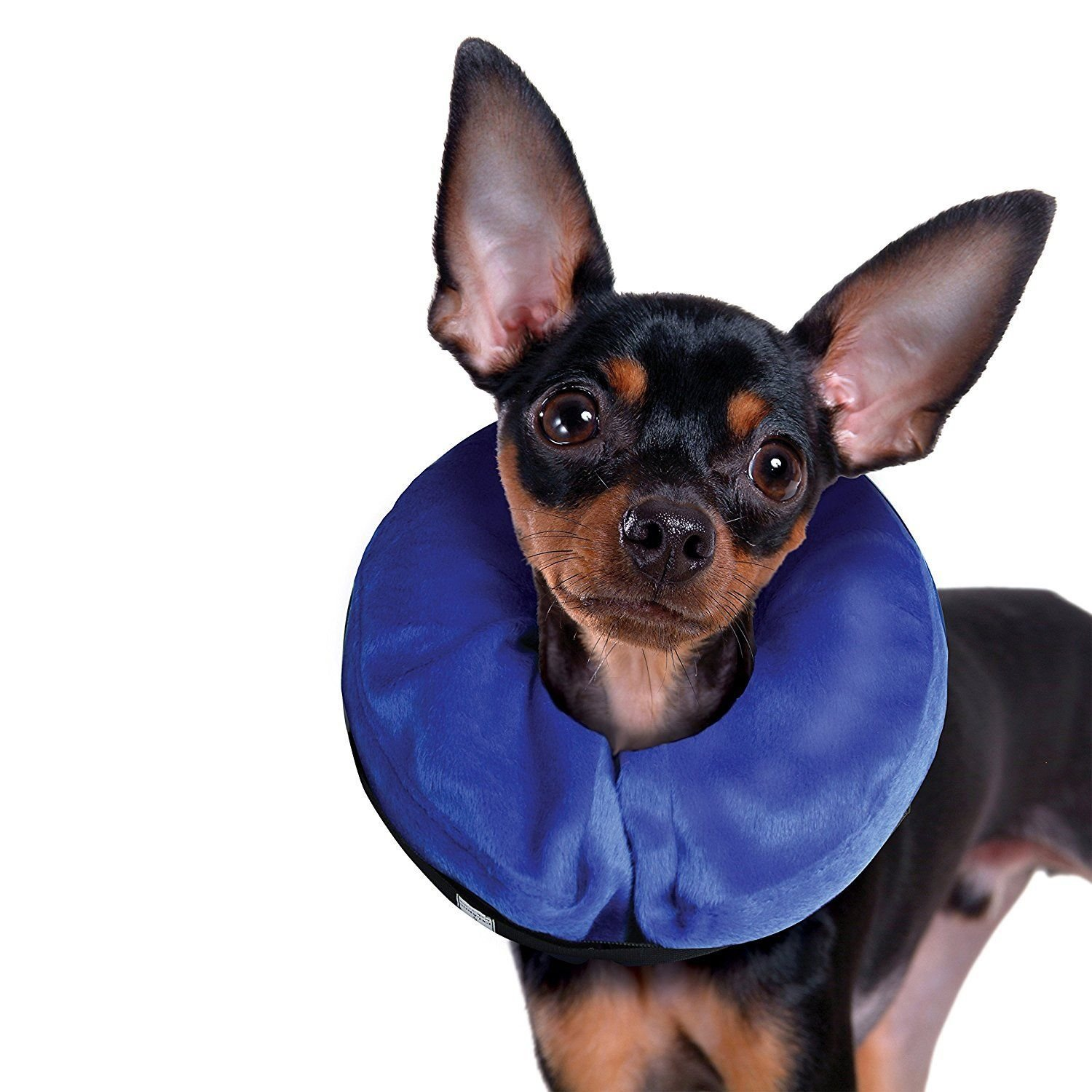 KONG Cloud E-Collar Inflatable protective for dogs and cats X-Small 6'' by Ecollar