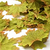 SunAngel Package of Approximately 144 Artificial Autumn Maple Leaves Fall Silk Leaves for for Weddings, Events and Decorating (Green)
