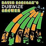 David Rodigan's Dubwize