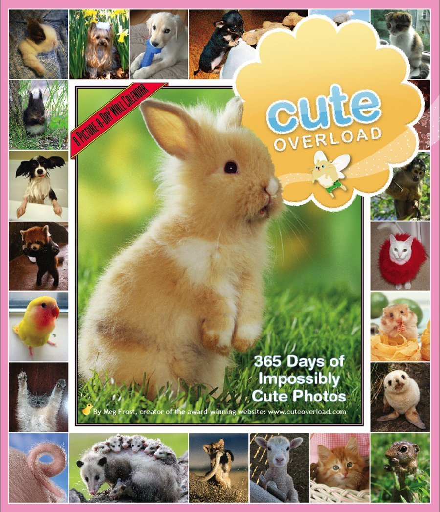 Cute Overload: 365 Days of Impossibly Cute Photos Calendar 2010 (Picture-A-Day Wall Calendars) ebook