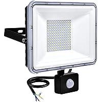 100W LED Schijnwerper met PIR Bewegingssensor 8000LM Buiten Wandlamp Waterdicht IP67 Landschap Verlichting, 6500K Koud…