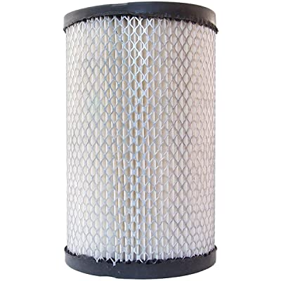 Luber-finer AF70 Heavy Duty Air Filter: Automotive