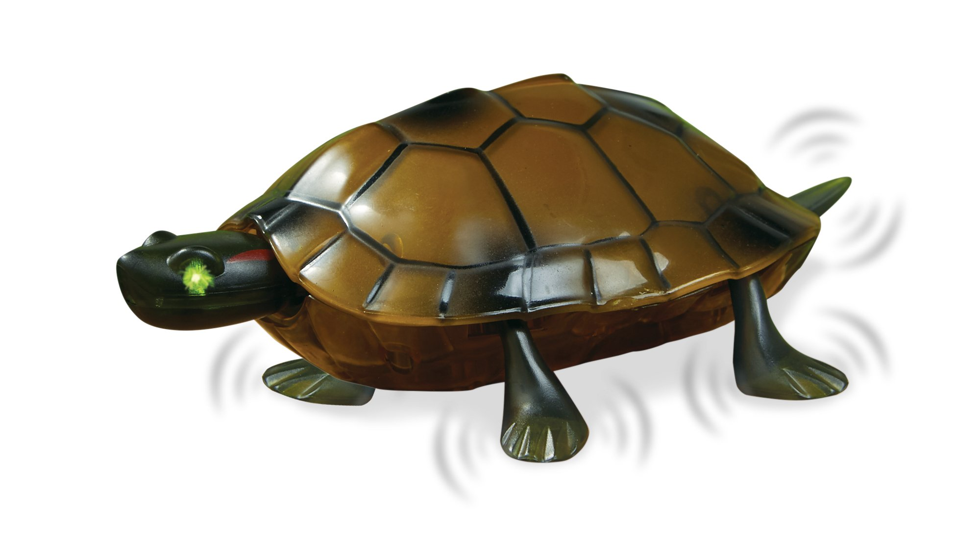 The Paragon Remote Control Turtle - RC Animal Toy, Turtle Toy for Kids and Adults by The Paragon (Image #2)