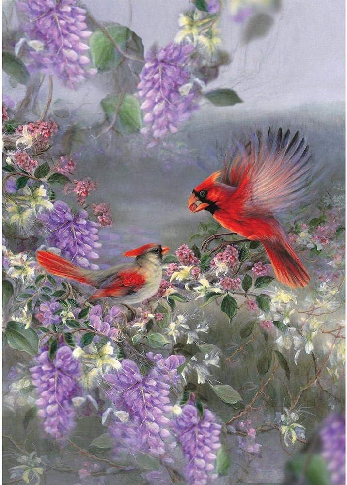 Kits De Broderie Au Point De Croix Kit De Broderie Point De Croix Fleur Oiseau Plein De Peinture De Diamant De Bricolage 5d Diy Cuisine Maison Hotelaomori Co Jp