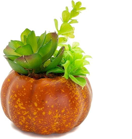 Amazon Com Hanahana Artificial Plant Fake Pumpkin Potted Desk