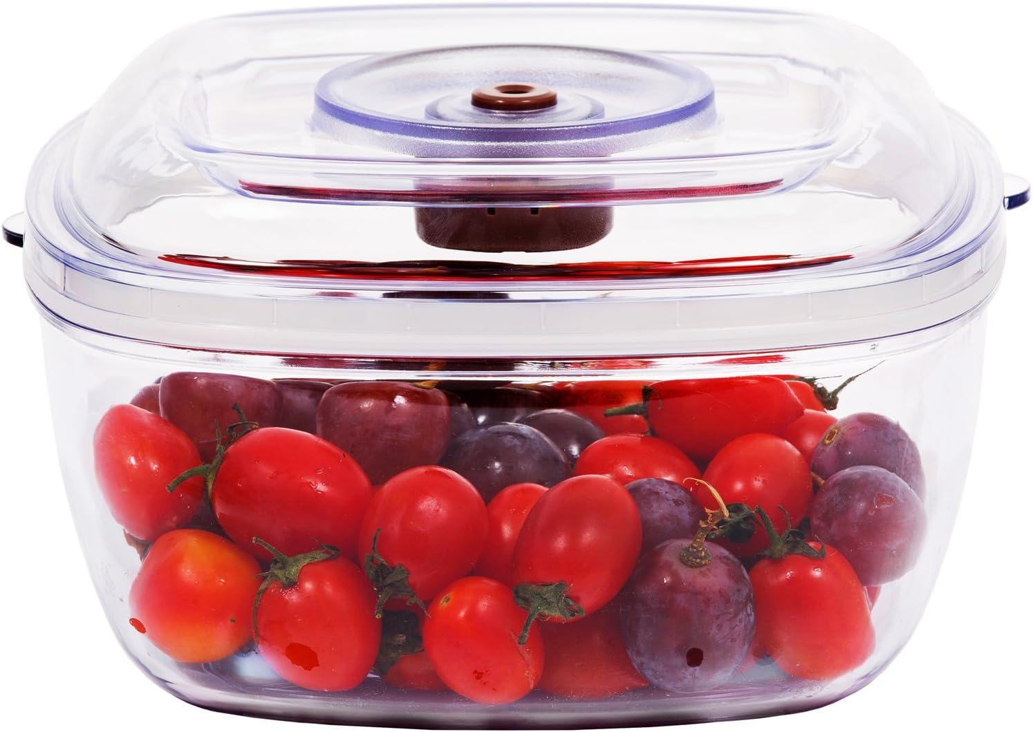 GERYON Vacuum Seal Container for Food Storage Vacuum Sealer Machine with Vacuum Hose for Food Saver, 2.1 QUART(2 LITER)