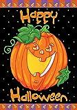 Toland - Happy Halloween - Decorative Pumpkin Holiday Jack o Lantern USA-Produced Garden Flag