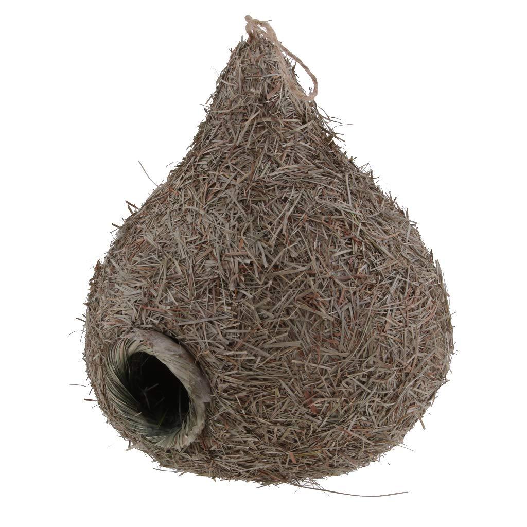 Fenteer Nichoirs Nid D'oiseau Cage Oiseau/Maison Jardin Décor Suspendus - H: Ronde Maison