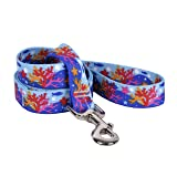 "Yellow Dog Design Coral Reef Dog Leash 1"" Wide and"