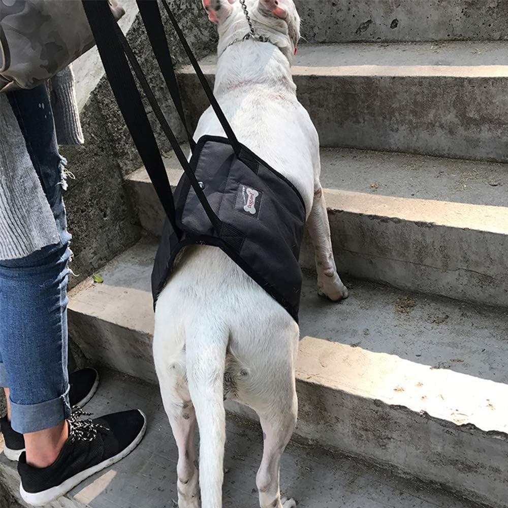 Hunde Gehhilfe Rehahilfe mit Griff TFENG Hundegeschirr Tragehilfe Geschirr f/ür Hunde Verletzungen und Arthritis